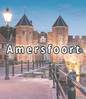 Stripper huren in Amersfoort