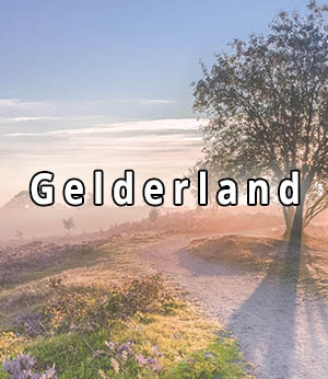 Stripper huren in Gelderland