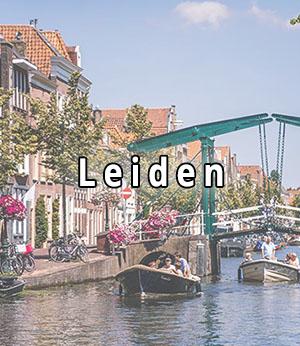 Stripper huren in Leiden