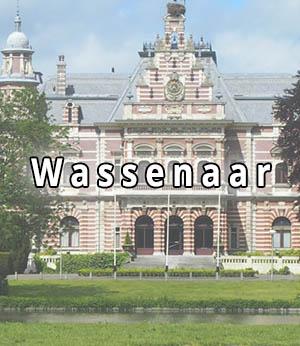Stripper huren in Wassenaar